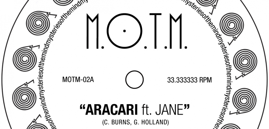 """Aracari,"" from M.O.T.M.'s new EP, sounds like a balmy D.C. summer."