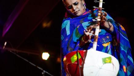 Mauritanian singer and instrumentalist Noura Mint Seymali.