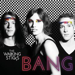 bang-walkingsticks-lg