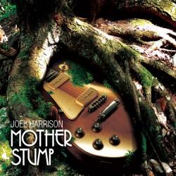 Joel Harrison's Mother Stump