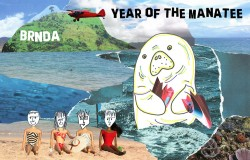 Year-of-the-Manatee-Album-Cover