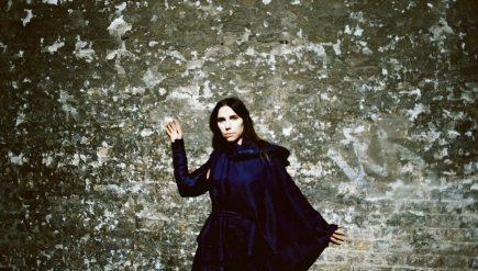 "PJ Harvey's ""Community of Hope"" targets development and poverty in D.C. But is it fair?"
