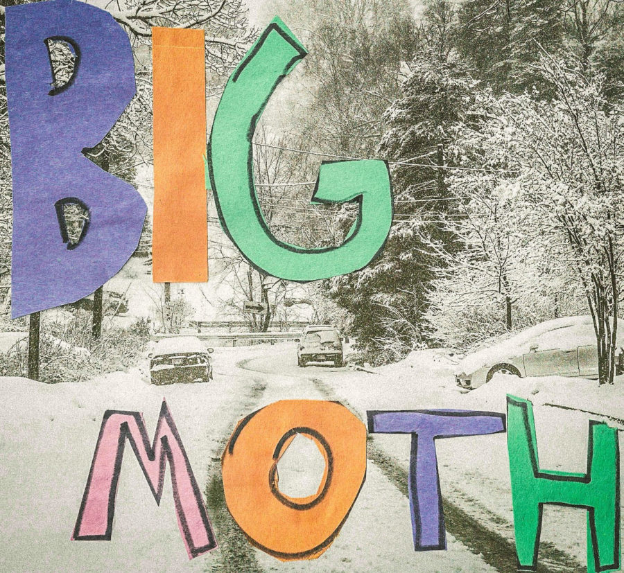 big-moth