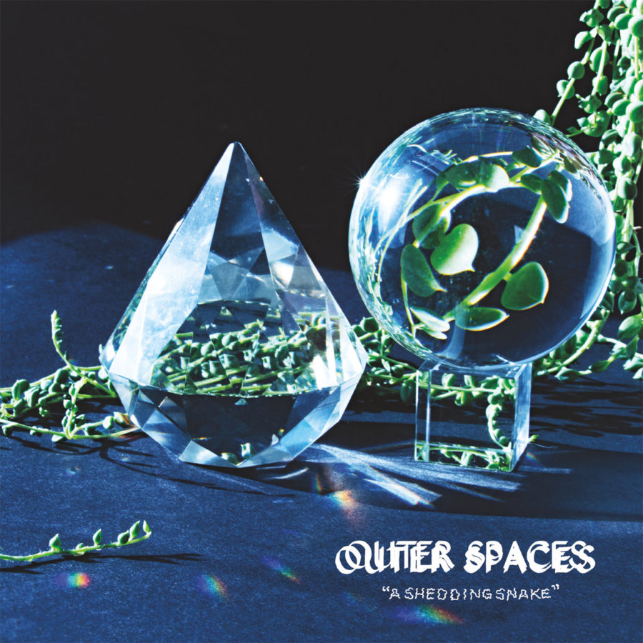 outer-spaces-shedding-snake